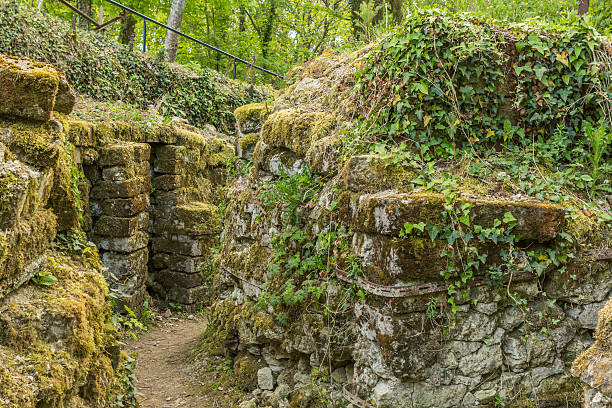 German trenchs ruins Vauquois France abandoned German trenches ruins at Vauquois in France verdun stock pictures, royalty-free photos & images