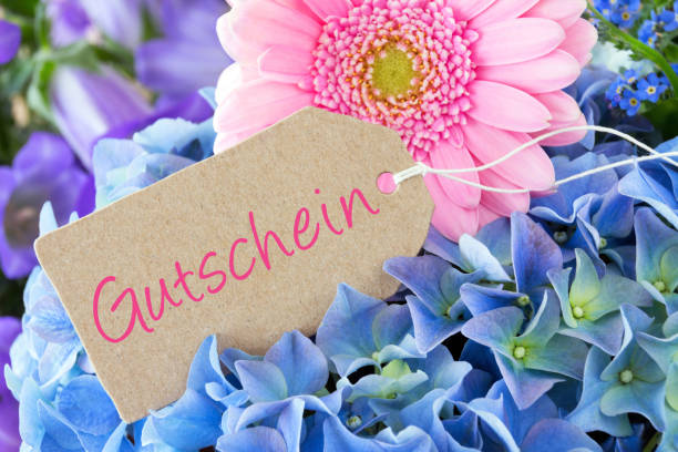 German voucher with gerbera as background stock photo