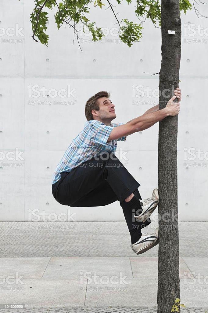 Germany, Berlin, Man climbing tree royalty-free stock photo