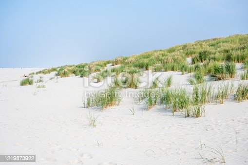 istock Germany, dunes with beach oats. 1219873922