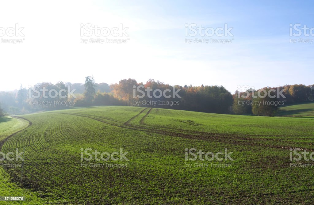 Germany: Gently rolling countryside on a sunny day at the end of October stock photo