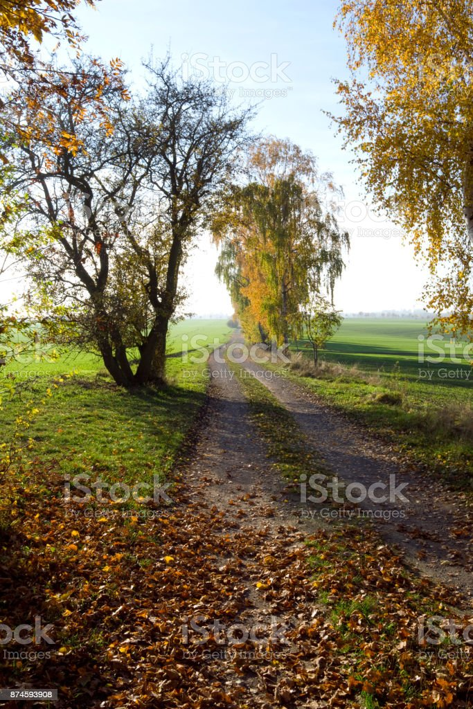 Germany: Small farm track through the countryside in Eastern Thuringia stock photo