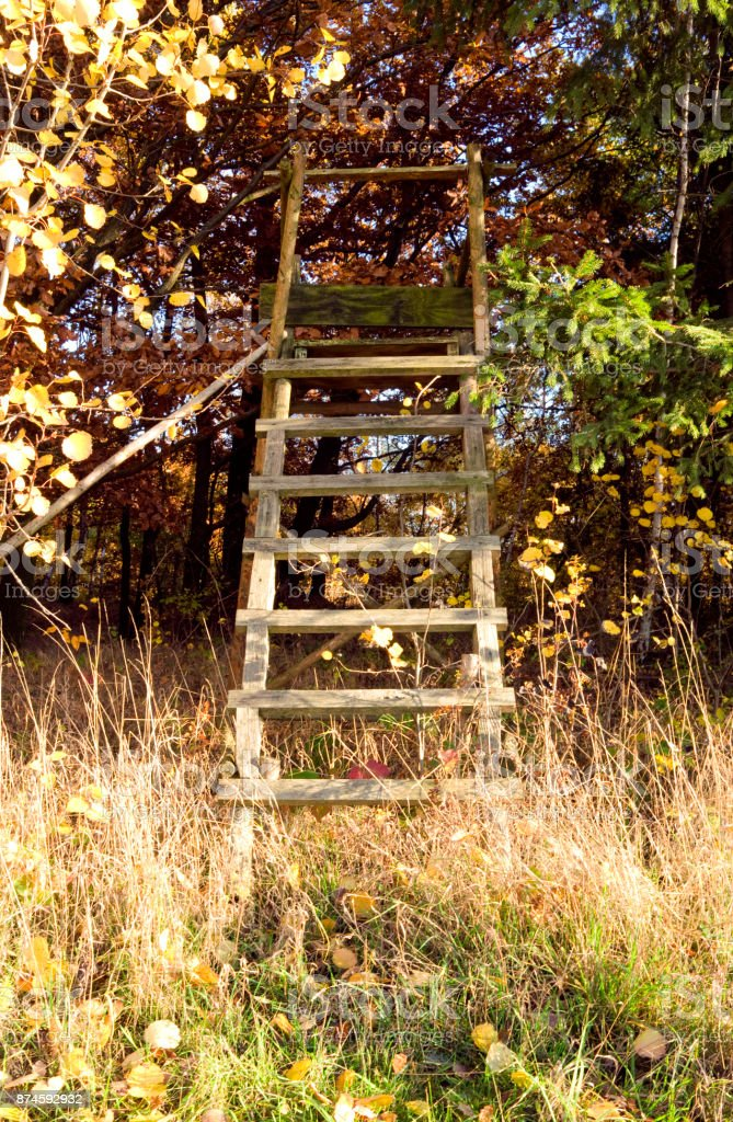 Germany: Wooden high seat at the edge of the forest stock photo