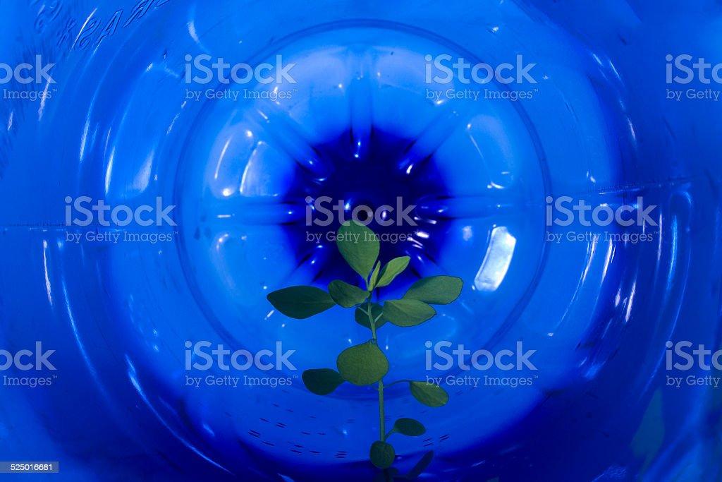 Gestion de residuos stock photo