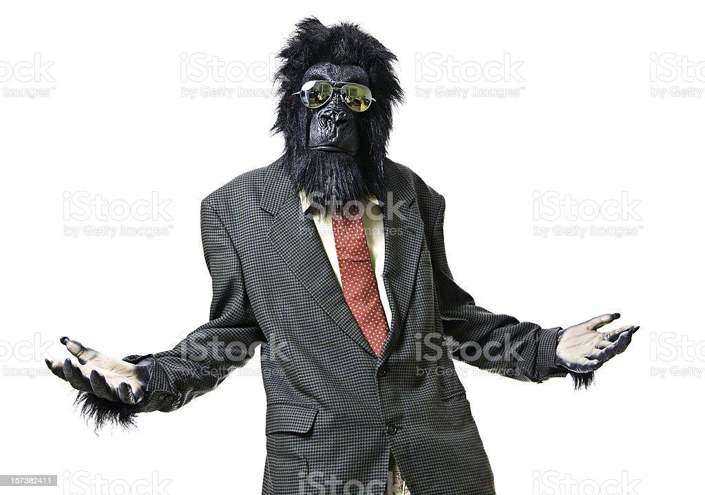 Gesturing Gorilla Businessman Asks a Question stock photo