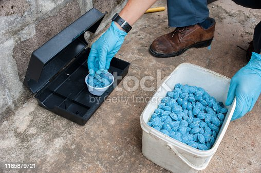 istock Get rid of rat using  bait poison box, pest control in industry. 1185879721