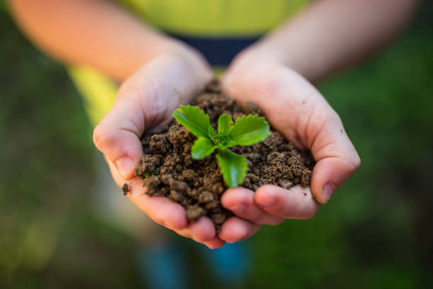 Get sowing, get growing stock photo