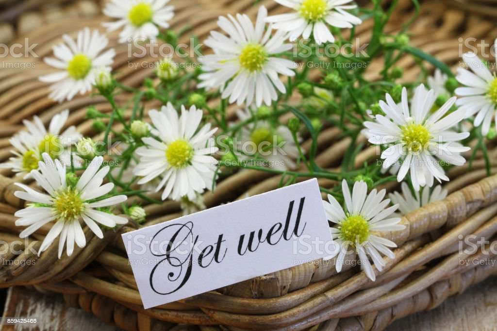 Get well card with fresh chamomile flowers on wicker tray stock photo