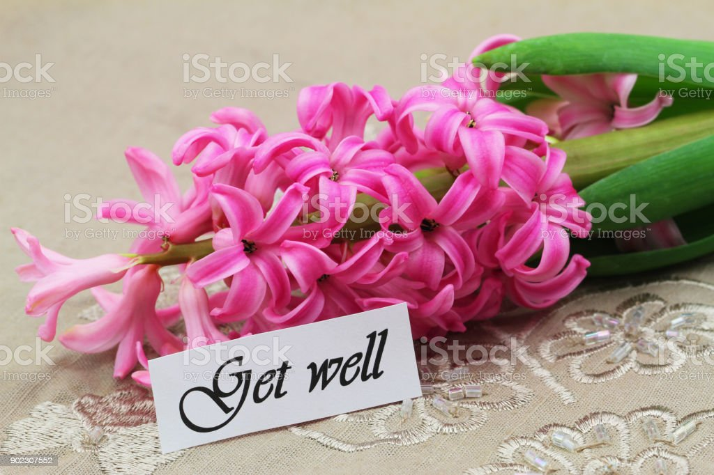 Get well card with pink hyacinth stock photo