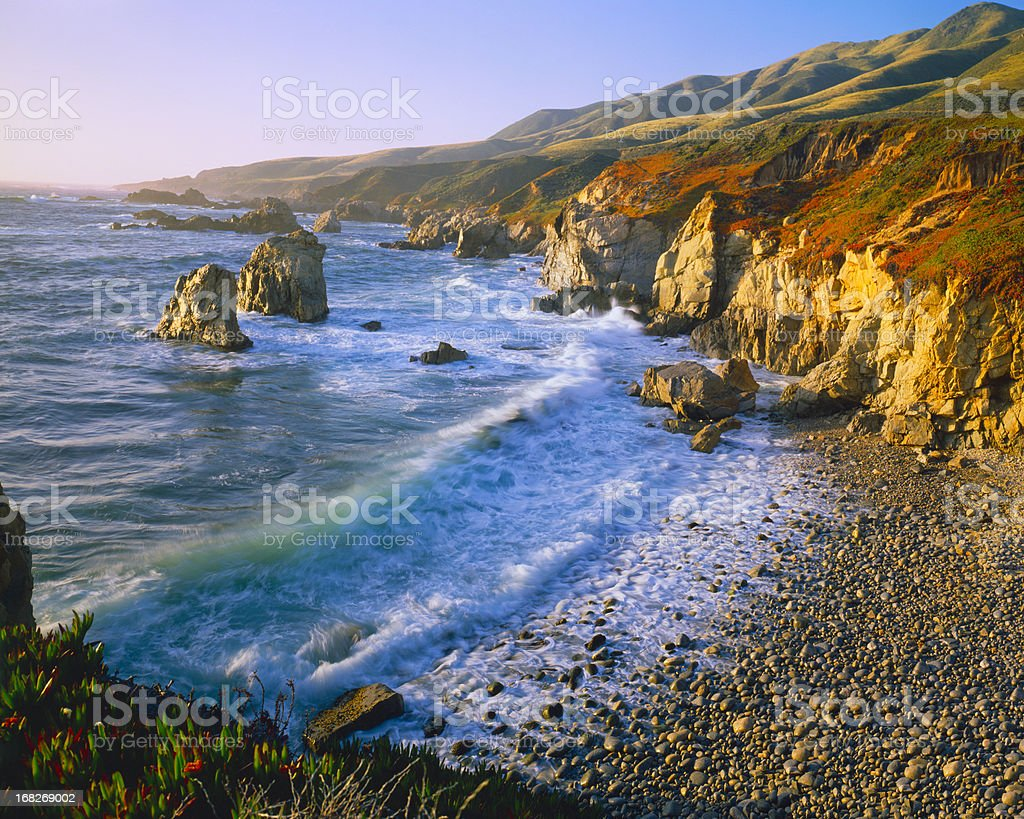 Getting Refreshed at the Big Sur Coast Of California (P) royalty-free stock photo