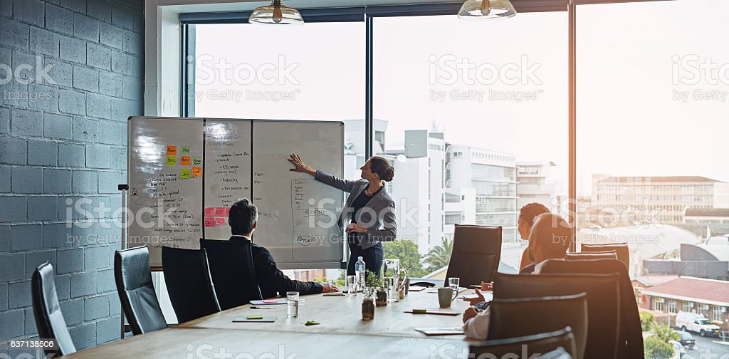 Getting the team onboard with her plan stock photo