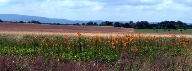 Gettysburg Schlachtfeld – Foto
