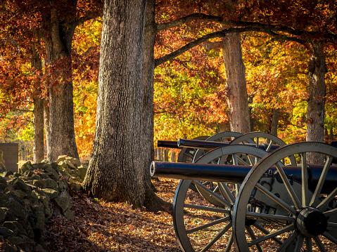 Gettysburg Cannons Among Autumn Oaks