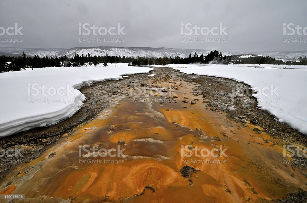 Geyser in Yellowstone National Park royalty-free stock photo