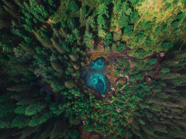 geyser (blue, silver) lake with thermal springs - państwowy rezerwat przyrody altay zdjęcia i obrazy z banku zdjęć