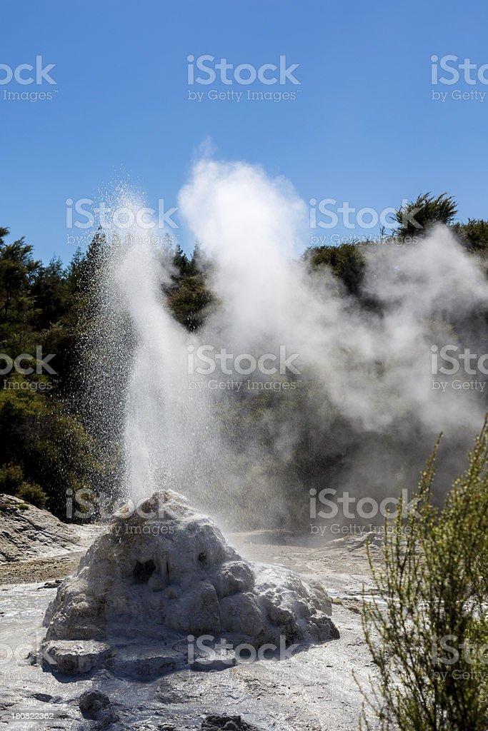 Geyser Waiotapu Thermal Park, Rotorua, New Zealand royalty-free stock photo