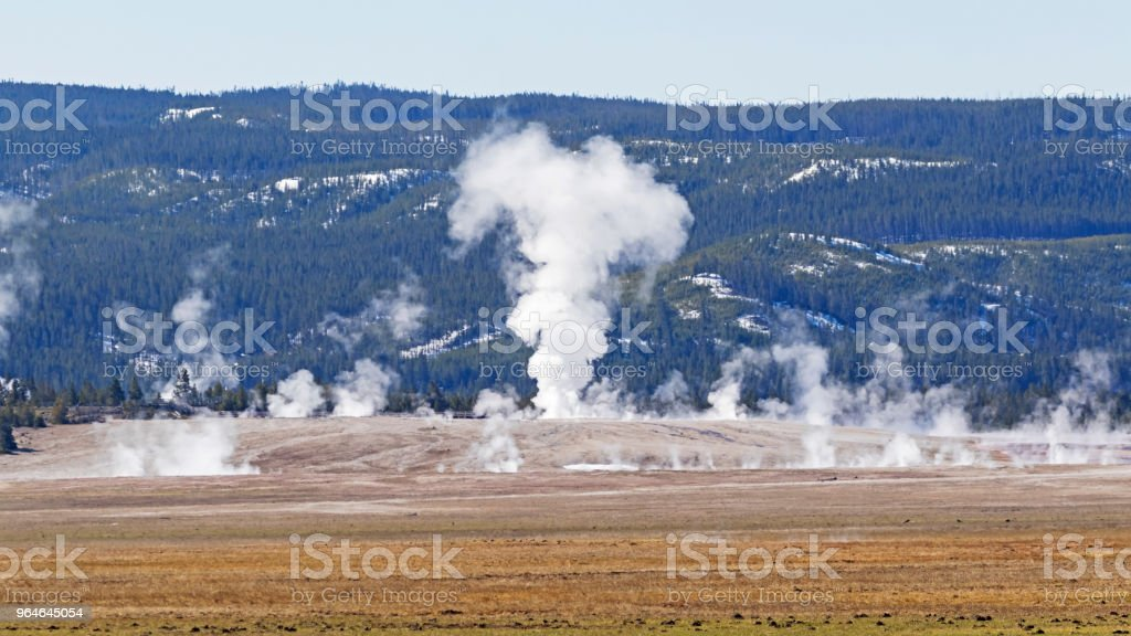 Geysers at Yellowstone National Park royalty-free stock photo