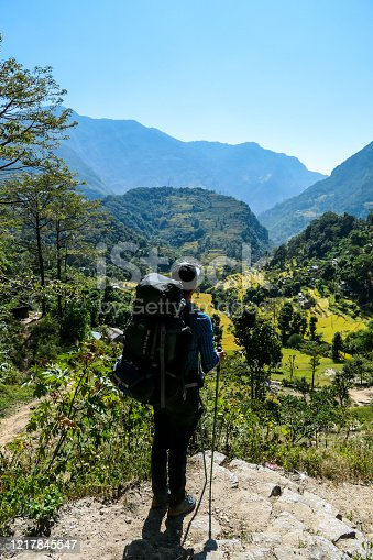 A man hiking along lush green rice paddies along Annapurna Circuit Trek, Nepal. The rice paddies are located in the Himalayan valley. Lots of trees growing in between. High Mountains in the back