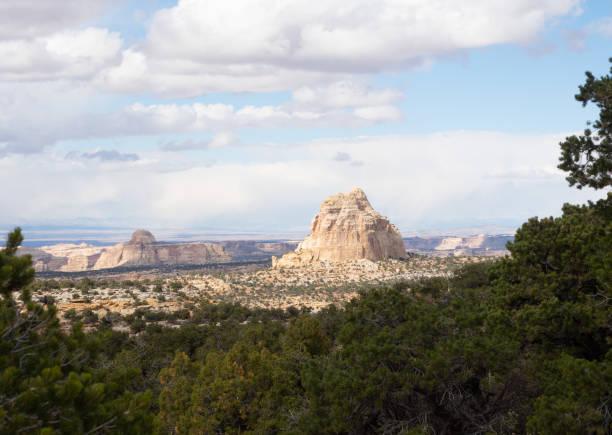 ghost rocks mit evergreens in die vorrunde - colorado plateau stock-fotos und bilder