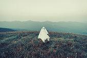 Ghost walking on meadow