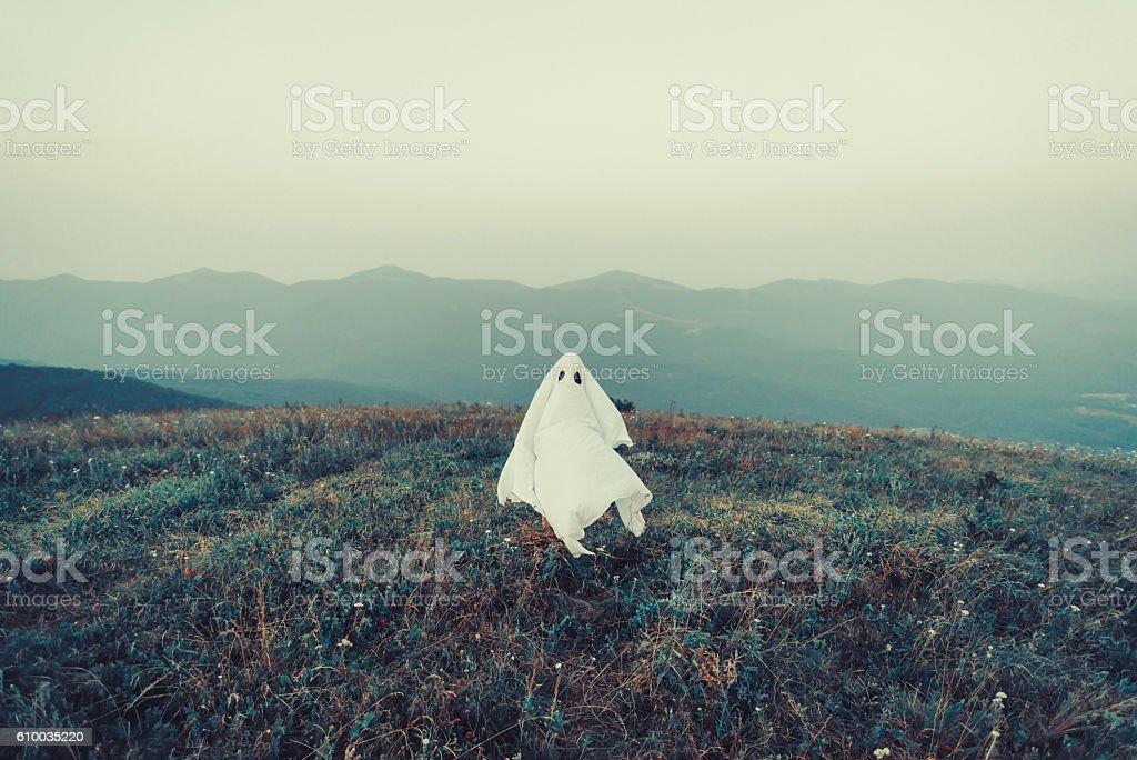 Ghost walking on meadow stock photo