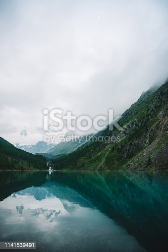 Ghostly forest near mountain lake in early morning. Mountain creek from glacier flows into lake. Ripple on smooth water surface. Low clouds. Dark atmospheric misty wood landscape. Tranquil atmosphere.