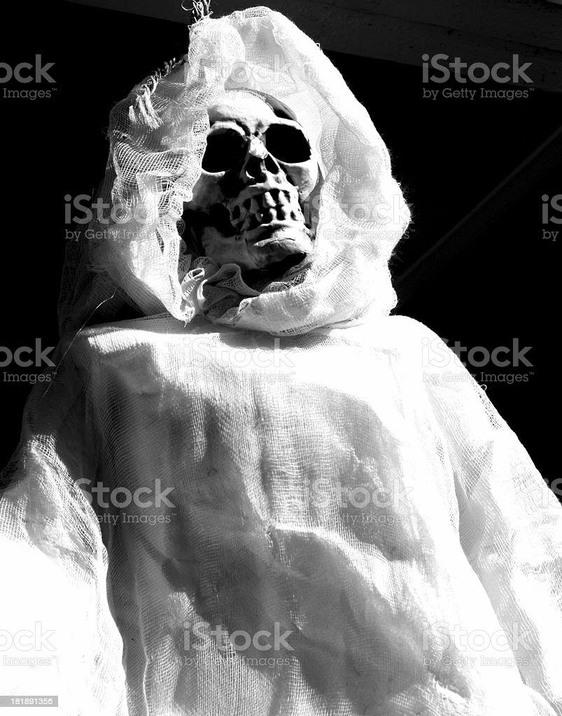 Ghostly Skull Halloween stock photo