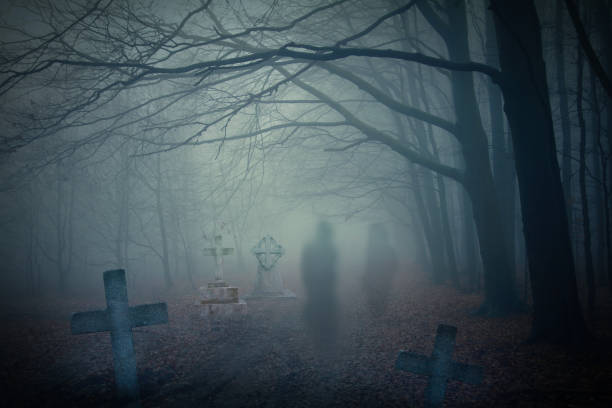 geister im verwunschenen wald - waldfriedhof stock-fotos und bilder