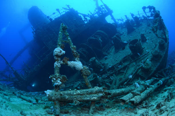 Giannis D Shipwreck, Red Sea, Egypt