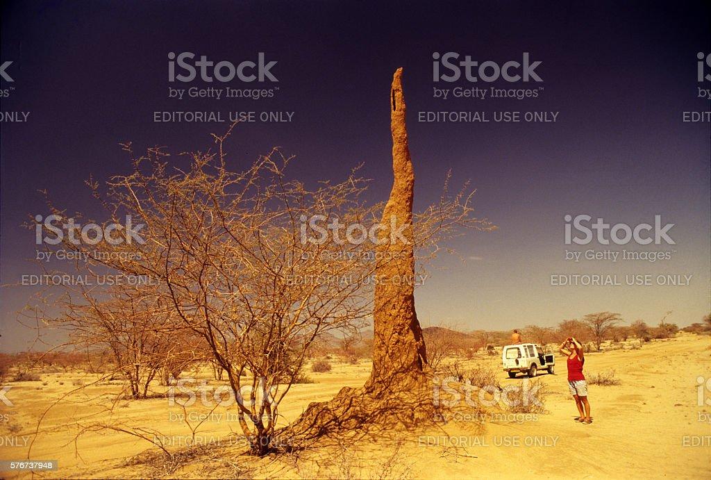 Giant anthill on the road near Kapedo, northern Kenya stock photo