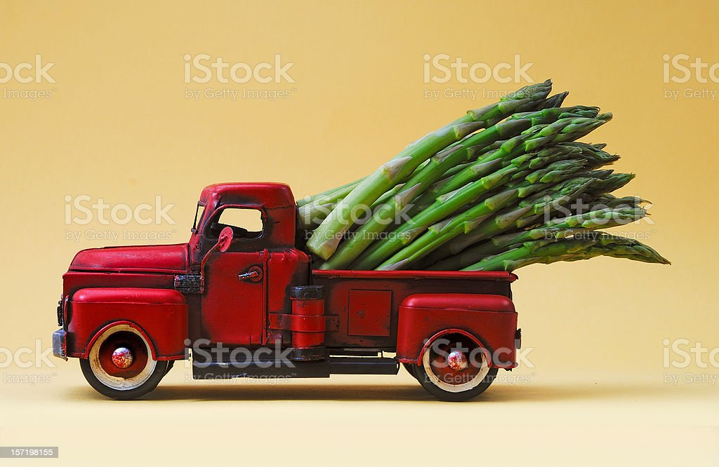 giant asparagus stock photo