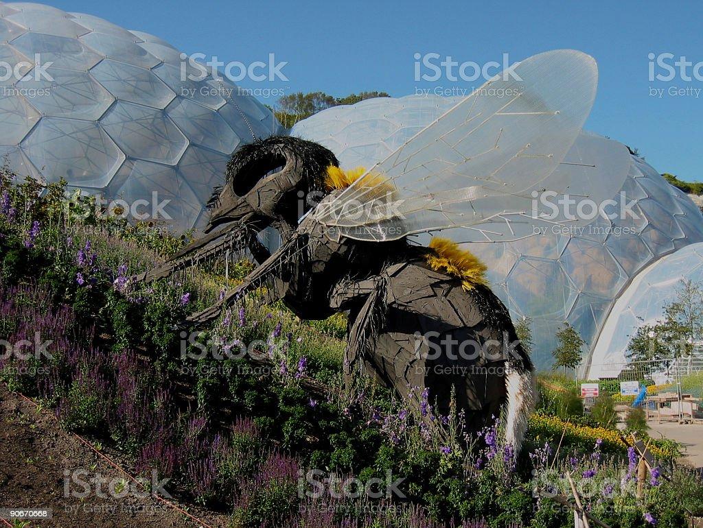 Giant Bee royalty-free stock photo