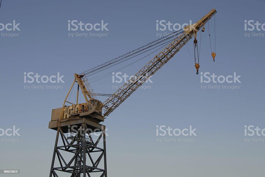 Giant Crane royalty-free stock photo