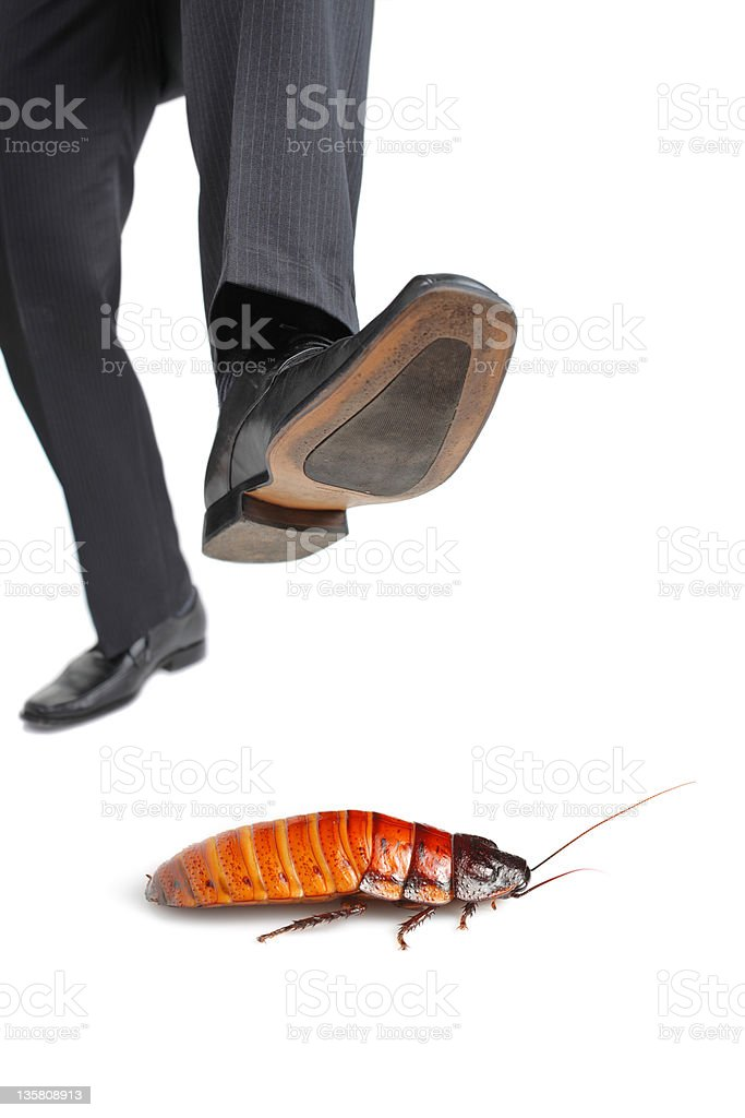 Giant foot about to step on a cockroach stock photo