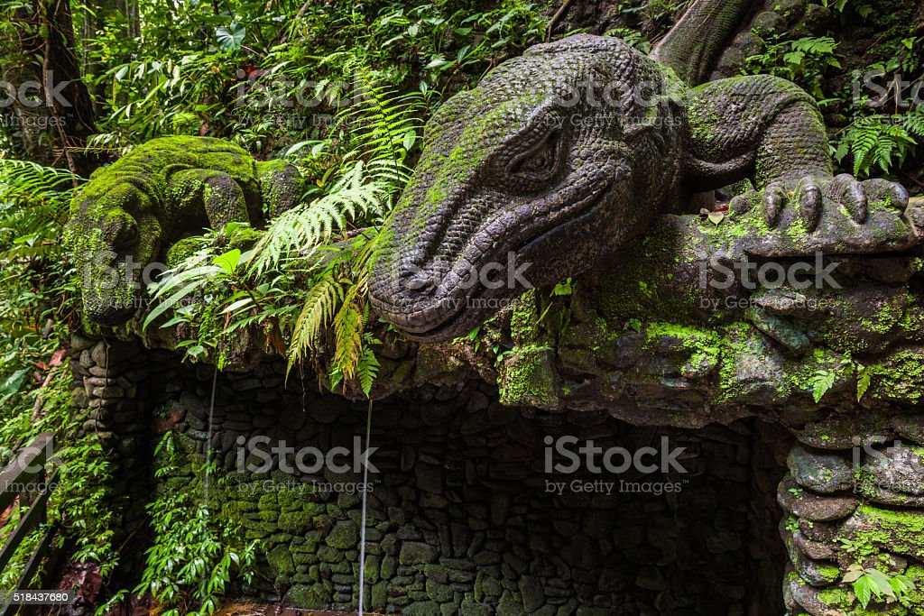 Giant Lizard in Sacred Monkey Forest, Bali stock photo