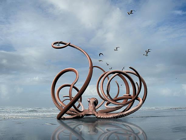 Giant octopus picture id502734452?b=1&k=6&m=502734452&s=612x612&w=0&h=bic7or1424n3aey7hqrzjdqofefadrioky2b5 acauw=