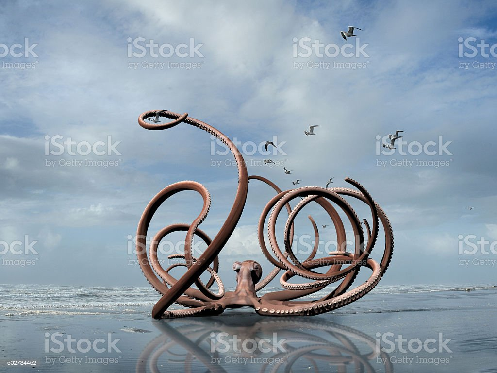 giant octopus stock photo