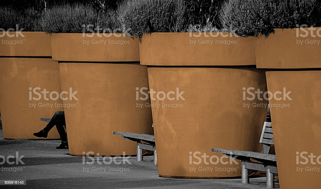 Giant plant pots on a sidewalk, Brussels, Belgium stock photo