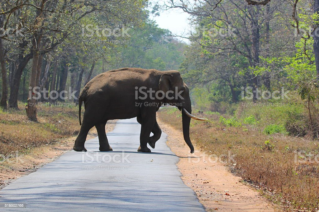 Giant Roadblock stock photo
