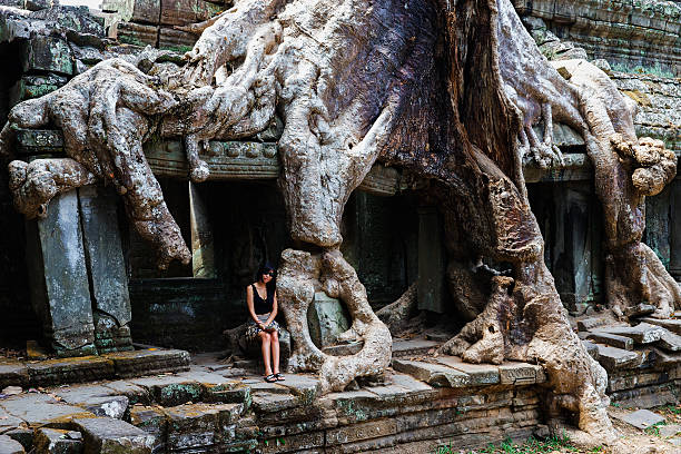 Giant Root from Preah Khan Temple stock photo