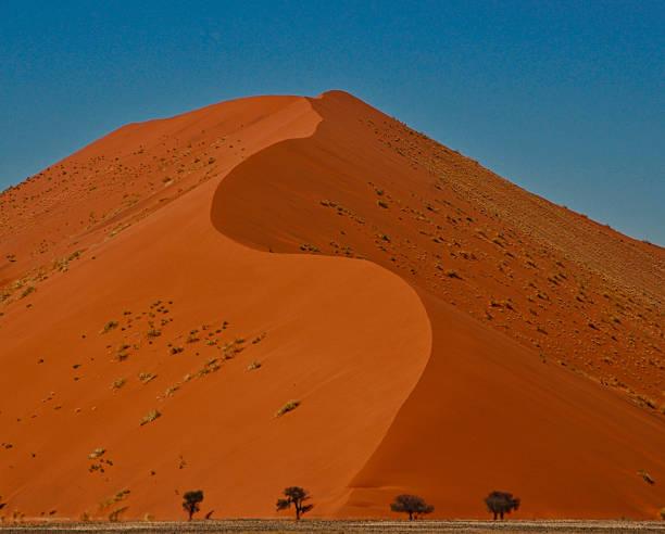 Giant sand dune in Namibia stock photo