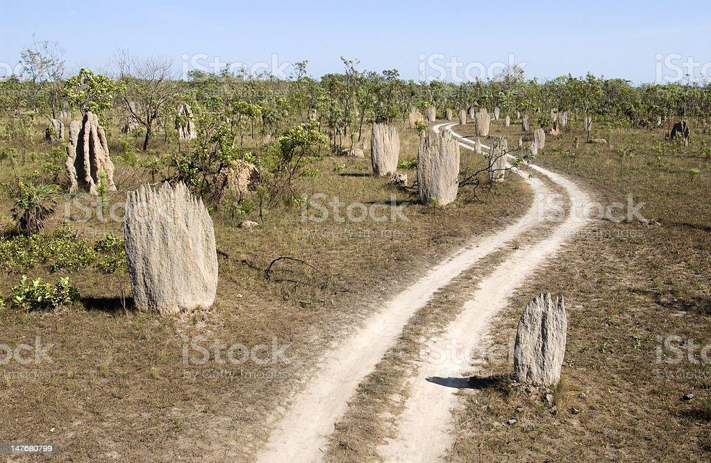 Giant termite mounds royalty-free stock photo