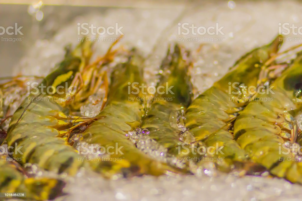 Giant tiger prawns for sale in a supermarket. Extra large size of...