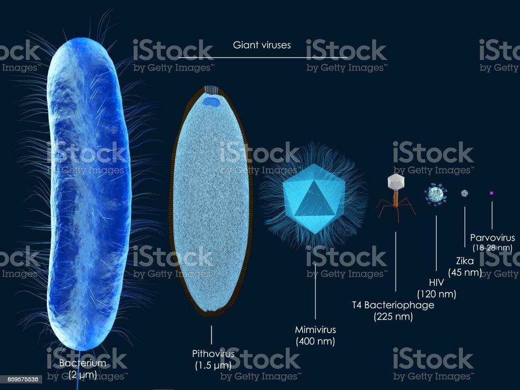 Giant viruses royalty-free stock photo