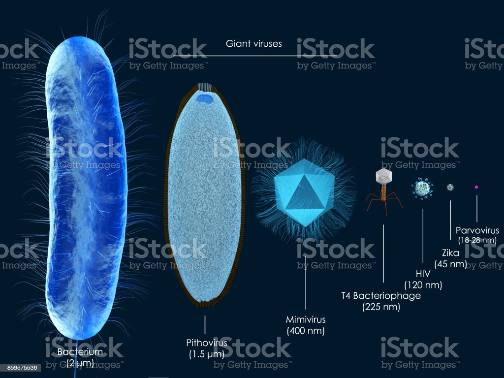 Giant viruses stock photo