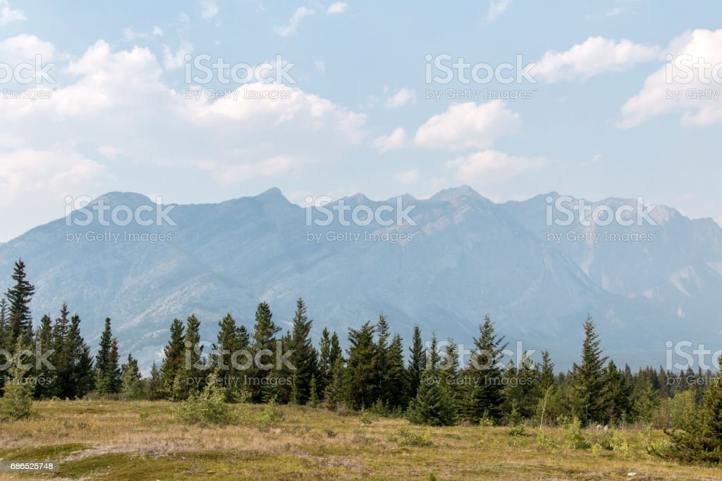 Giants in the distance royalty free stockfoto