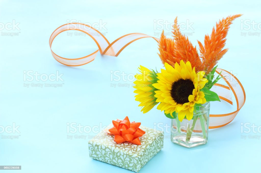 gift and sunflower royalty-free stock photo