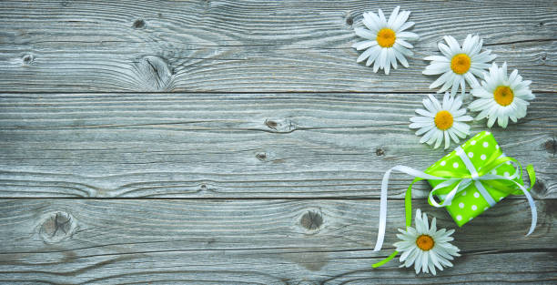 Gift box and daisy flowers on old wooden planks stock photo