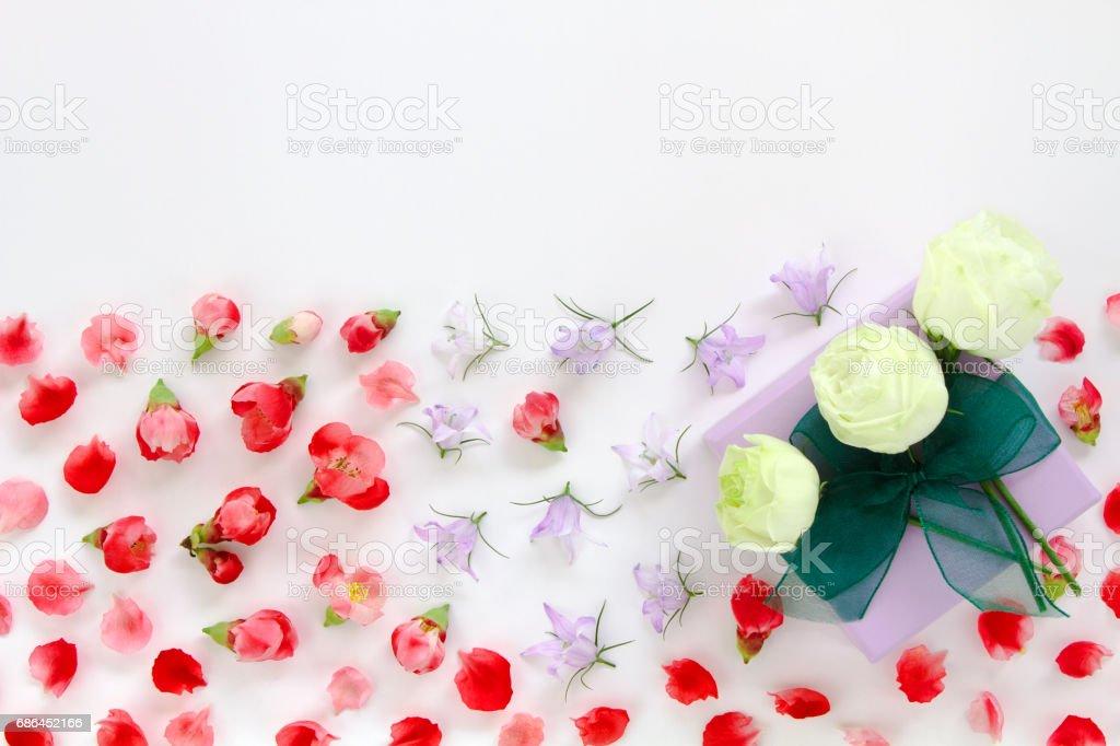 rose - Flower, Plant, Camellia, Backgrounds, Springtime, flat lay