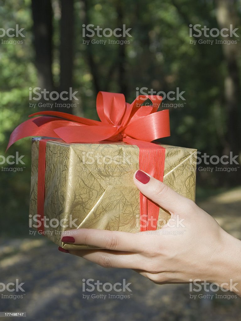 Gift box in hand royalty-free stock photo